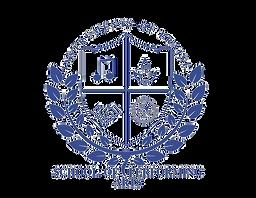 IOP Logo_edited.png
