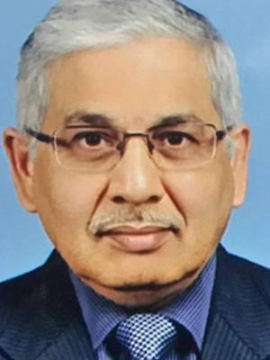 Mr. Siva Sankar Bhagavatula (Industrial Specialist)