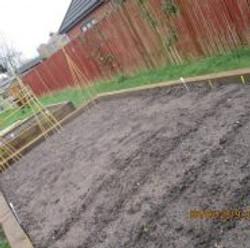planting-2-186x185.jpg
