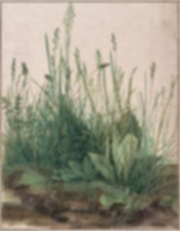 notes_de_travail,_64_-_Albrecht_Dürer.j