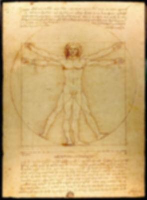 L'Homme de Vitruve.jpg