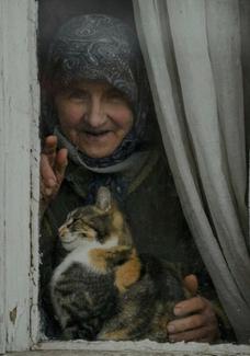 Dix-huit chats et le tôlier Hermann Brumm