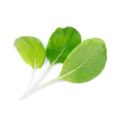 Repolho-Chinês Orgânico Lingots® - Vegetais