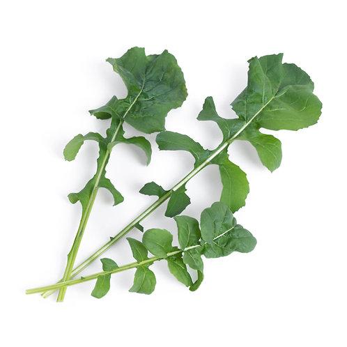 Rúcula Orgânica Lingots® - Vegetais