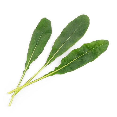 Mostarda Japonesa Mibuna Lingots® - Sabores Asiáticos