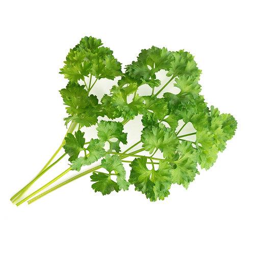 Lingots® Perejil con cuentas orgánico - Hierbas aromáticas