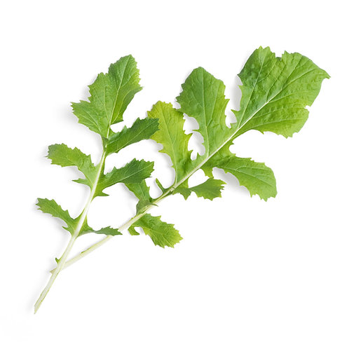 Namots Lingots® Orgánico - Verduras