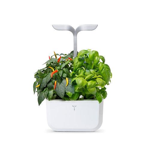 Horta Urbana EXKY - Smart Edition Branca