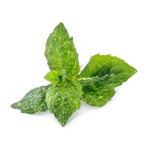 Hortelã Orgânica Lingots® - Ervas Aromáticas