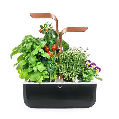 Horta Urbana Véritable® Smart Cooper Edition