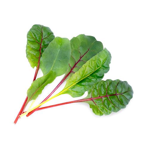 Beterraba Branca Orgânica Lingots® - Vegetais