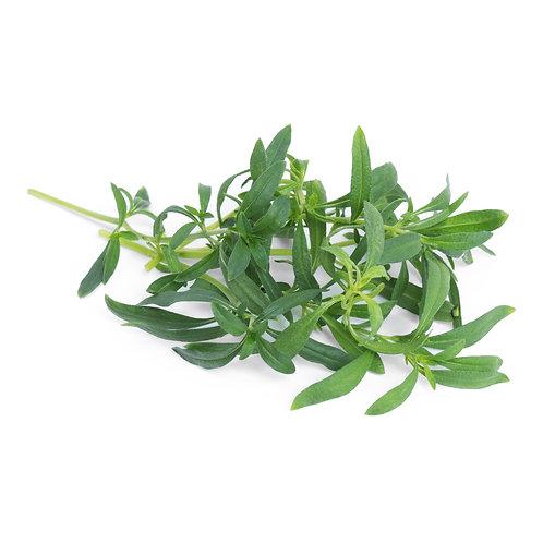 Lingots® Organic Wild Savory - Hierbas aromáticas