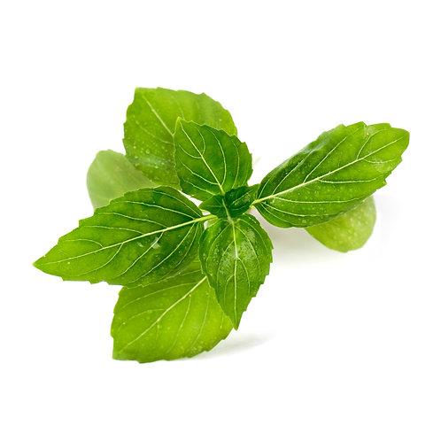 Lingots® Organic Cinnamon Basil - Hierbas aromáticas