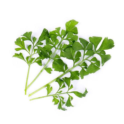 Berros Orgánicos Lingots® - Verduras