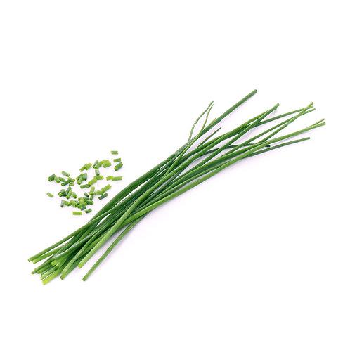 Cebolinho Orgânico Lingots® - Ervas Aromáticas