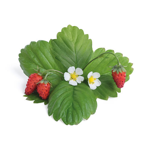 Lingots® Red Strawberries - Frutas
