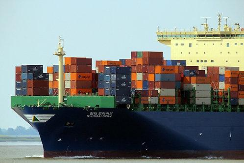 IMDG Dangerous Goods by Sea