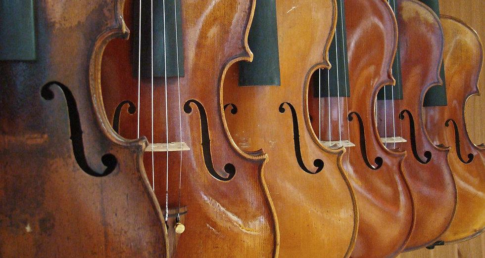 Violini antichi di liuteria
