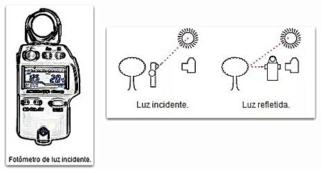 Fotômetro de luz incidente e refletida