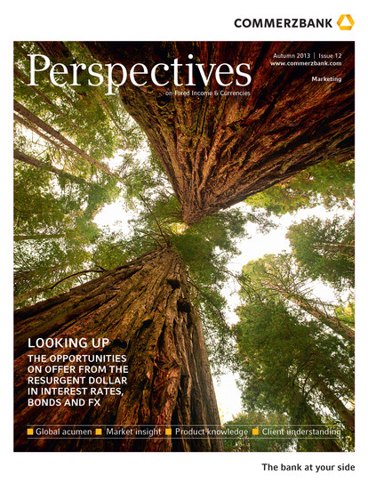 Perspectives Cover.jpg
