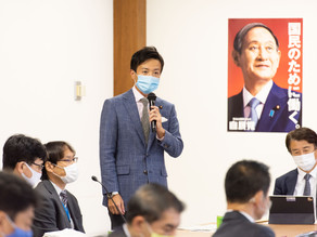 日英包括的経済連携協定の審議