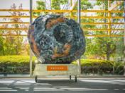 Foamlinx WeCutFoam Asteroid Prop