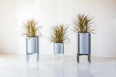 Modern Concrete Planters