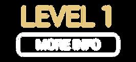 Make-Up Level 1 V3.png
