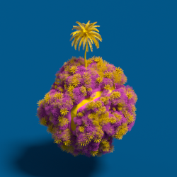 010_Daily_18th June_2020_01.png