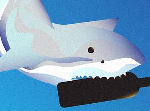 sharktank_header_edited.png