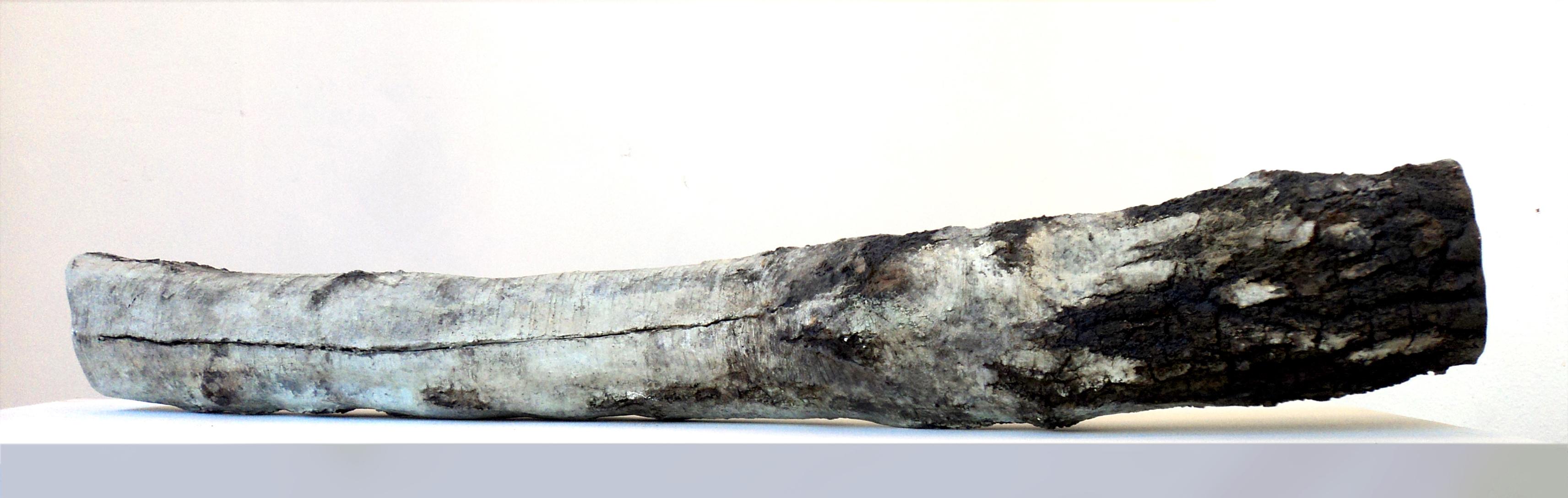 Bouleau, bronze