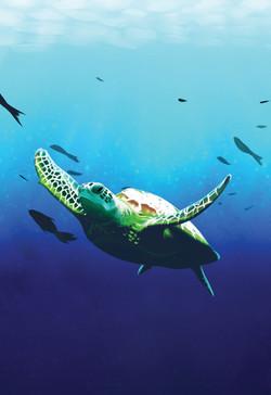 Untitled Game Turtle Illustration