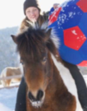 horse football e-book