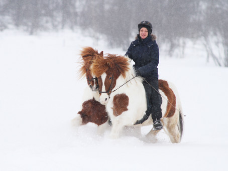 How to relax a rushy hand horse when ponying