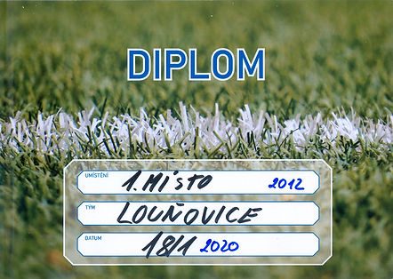 Diplom_2001180001_edited.jpg