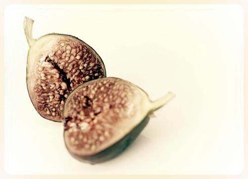 figs_edited.jpg