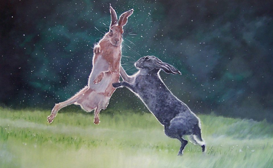 Mad-March-Boxing-Hares