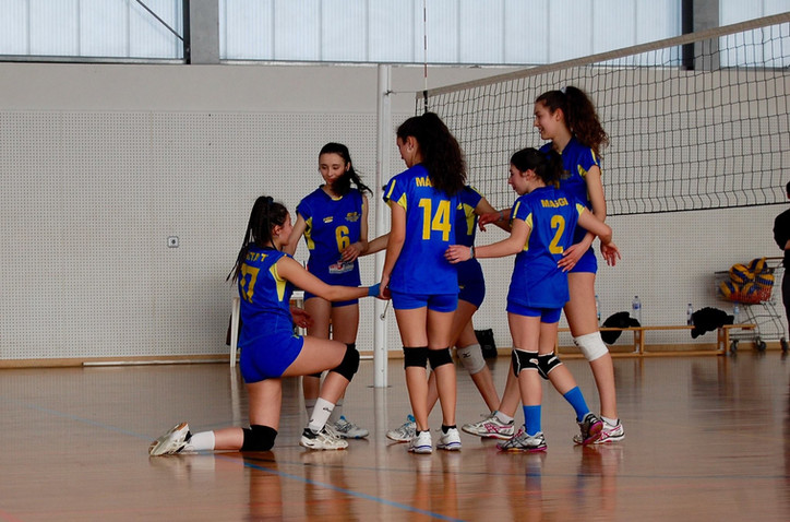 Voleibol 2