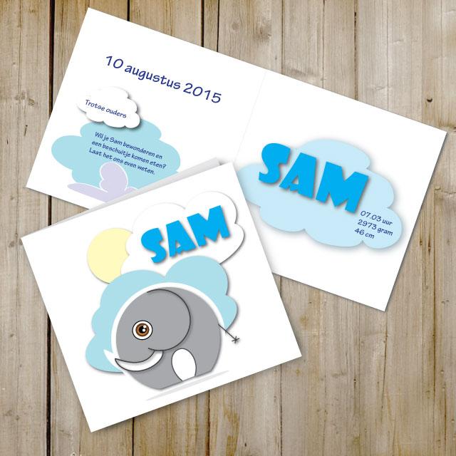 Geboortekaartje-sam-web-2015