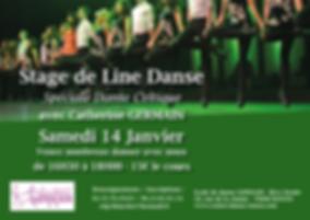 stage danse celtique