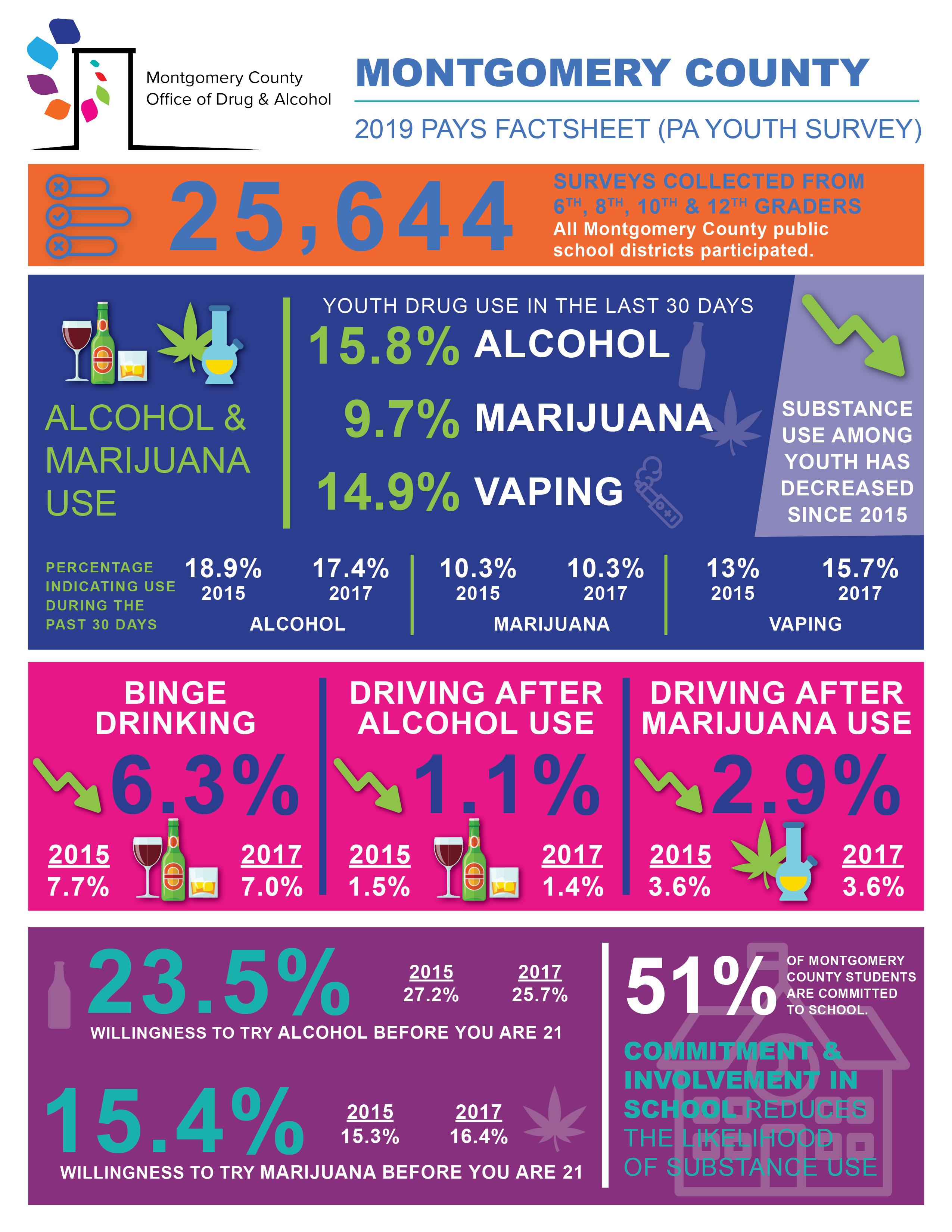Custom Infographics