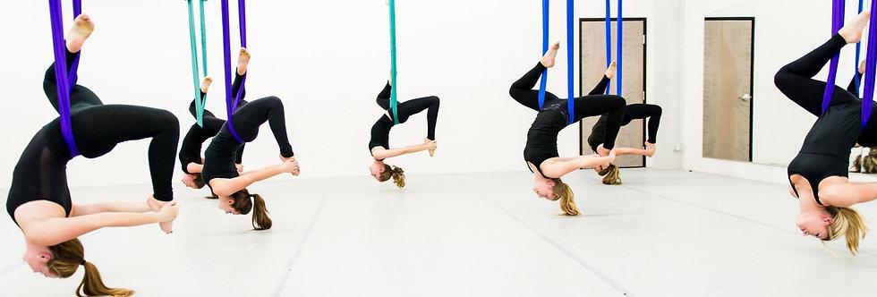 30 Pack Premier Aerial Yoga Hammock