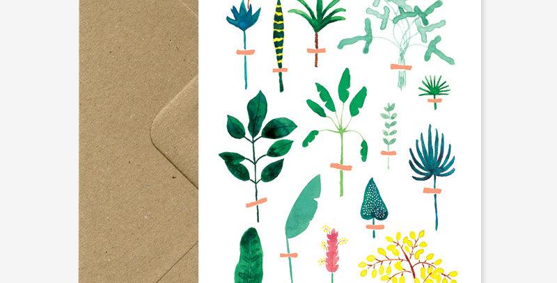 Herbier Exotique Card