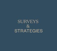 Surveys & Strategies