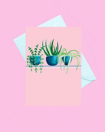 Plant pot greeting card, spider plant card, aloe Vera plant card
