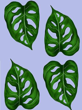 Leaf phone screen saver