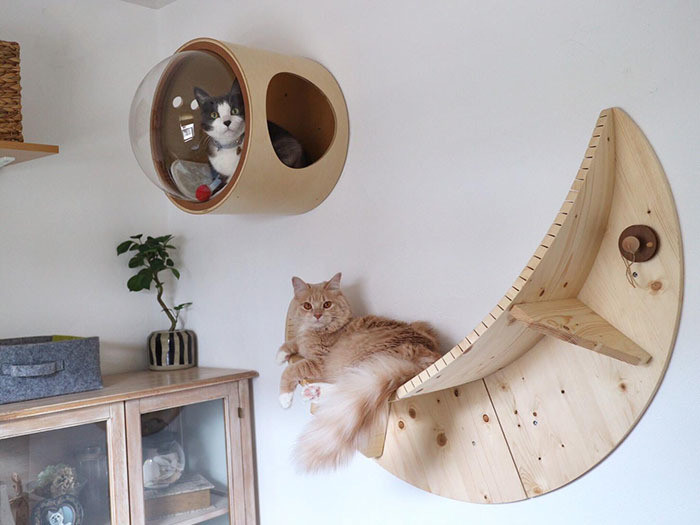 Cada cama é feita de madeira com uma vigia de bolha convexa que permite que o animal de estimação e seu dono se contemplem.