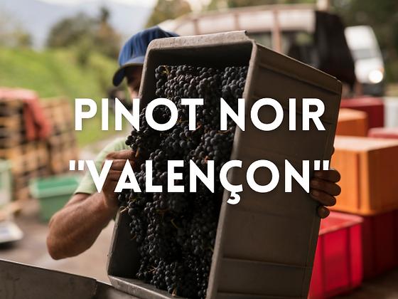 "Pinot noir ""Valençon"""