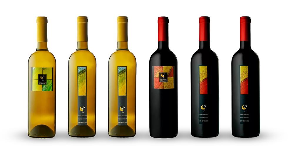 Coffret de 6 vins - Thierry Constantin