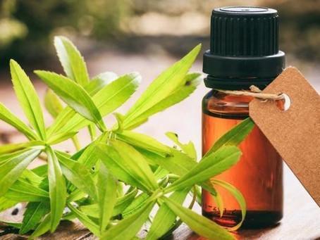 Huiles essentielles et renouveau printanier: top 5 des huiles essentielles pour entreprendre